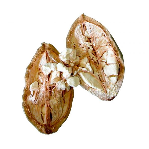 Baobab Powder Organic BIO Samskara Tribe 4 1