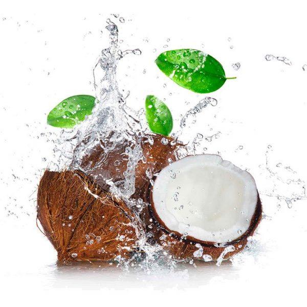 Leche de Coco en Polvo | Organic Coconut Milk Powder