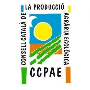 Collaboration Samskara Tribe CCPAE 1 1